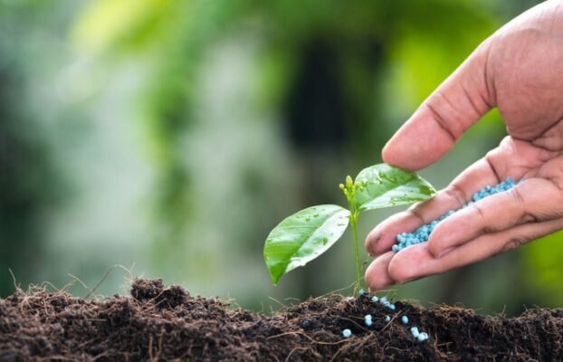 Why Ceon Plant Nutrition Products?