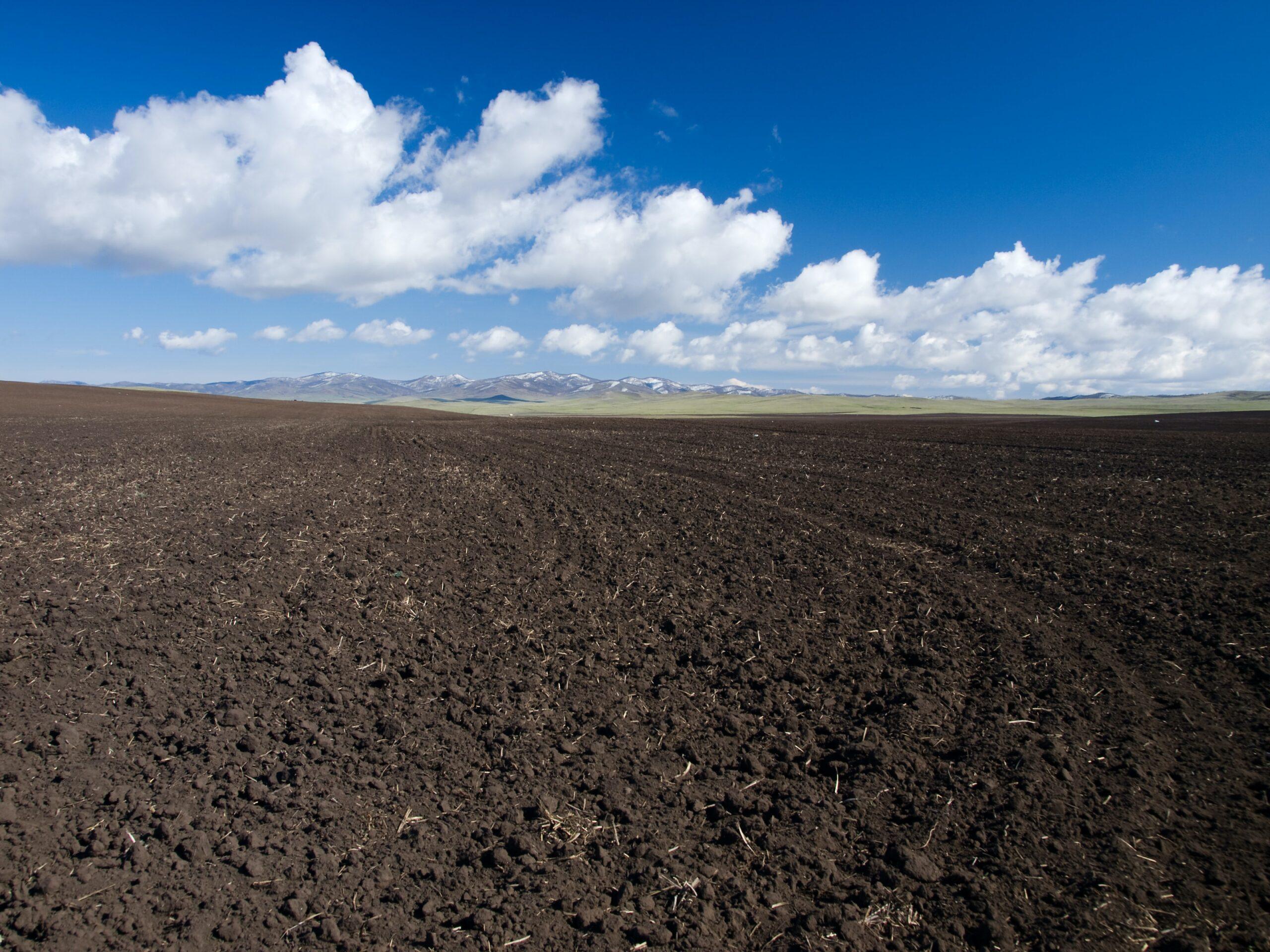 Kimya ve Tarım: Toprağın Terkibi